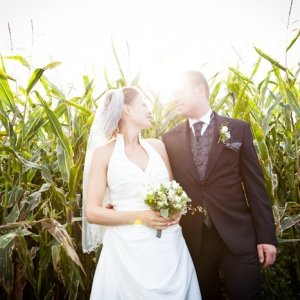 Par i majsmark - bryllupsfotograf