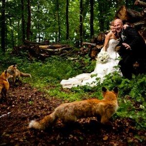 Inspiration til bryllupsfoto